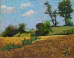 Sugarland Cornfields, 11 x 14, UART 500