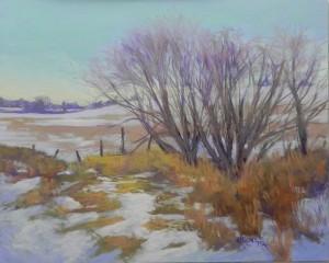 Winter Fields, 16 x 20, Pastelbord