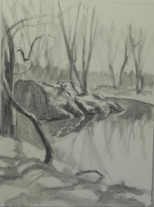 Lay in with graphite on white 12 x 16 Pastelbord