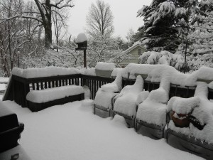 Our back porch. This is a color photo!