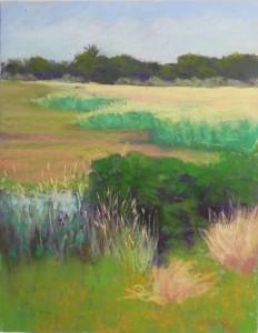 Chincoteague Grasses, 14 x 11, UART 400