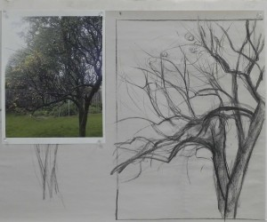 Initial charcoal drawing and photo