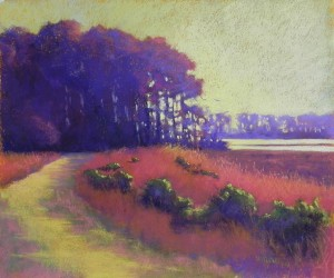 Marsh Walk, 20 x 24, BFK Rives and Colourfix Liquid Primer